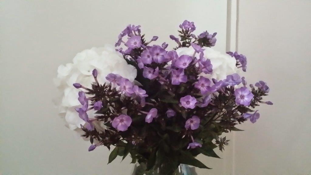 bloemen riejannne