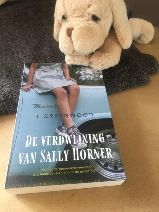 De verdwijning van Sally Aalsmeer